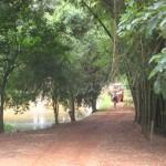 Sitio Tour_20091224_043